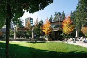 Capilano University Courses